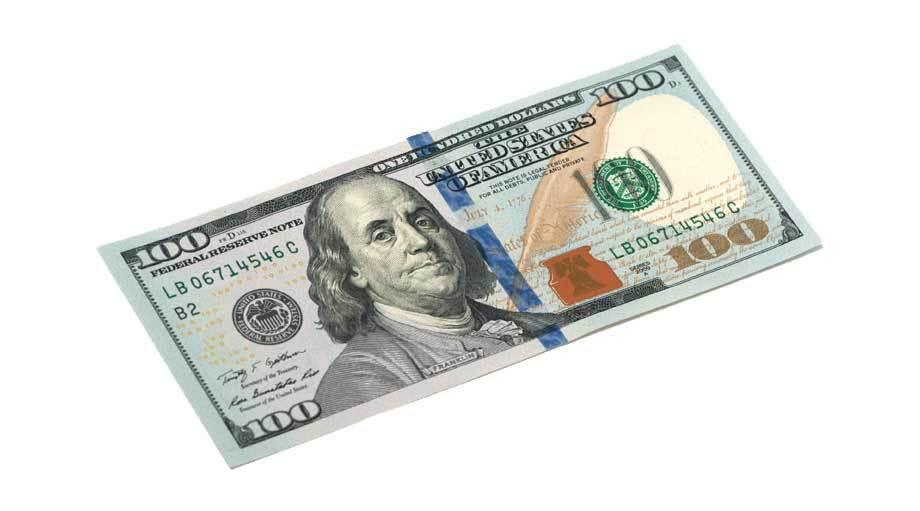 $100 Per Day